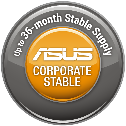 ASUS CORPORTAE STABLE MODEL