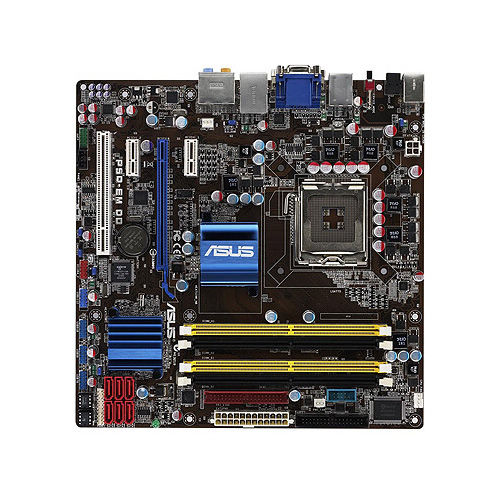 Asus P5qpl-am Motherboard Drivers Windows Xp Free Download