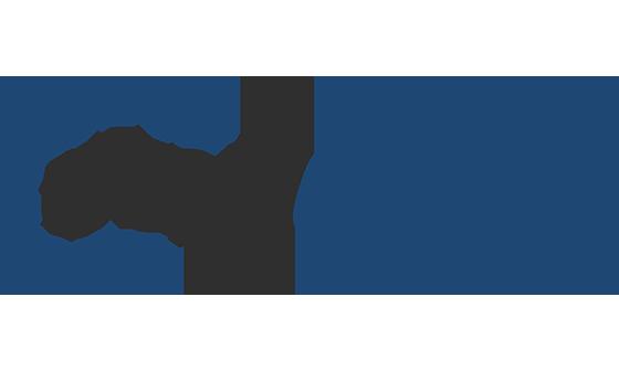 Vonguru