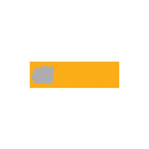 The Lazy Media